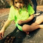 acorn make